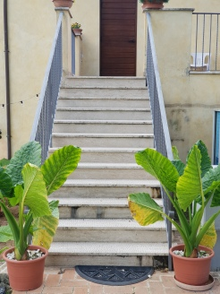 Ingresso Stanze Country House